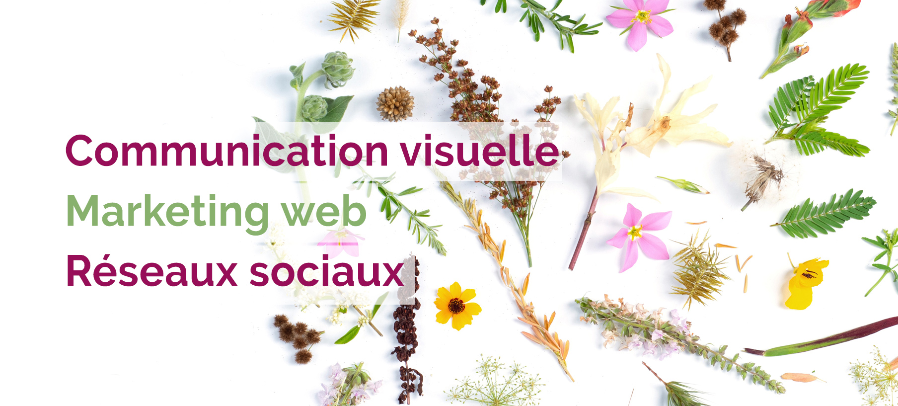 Marketing web et graphisme